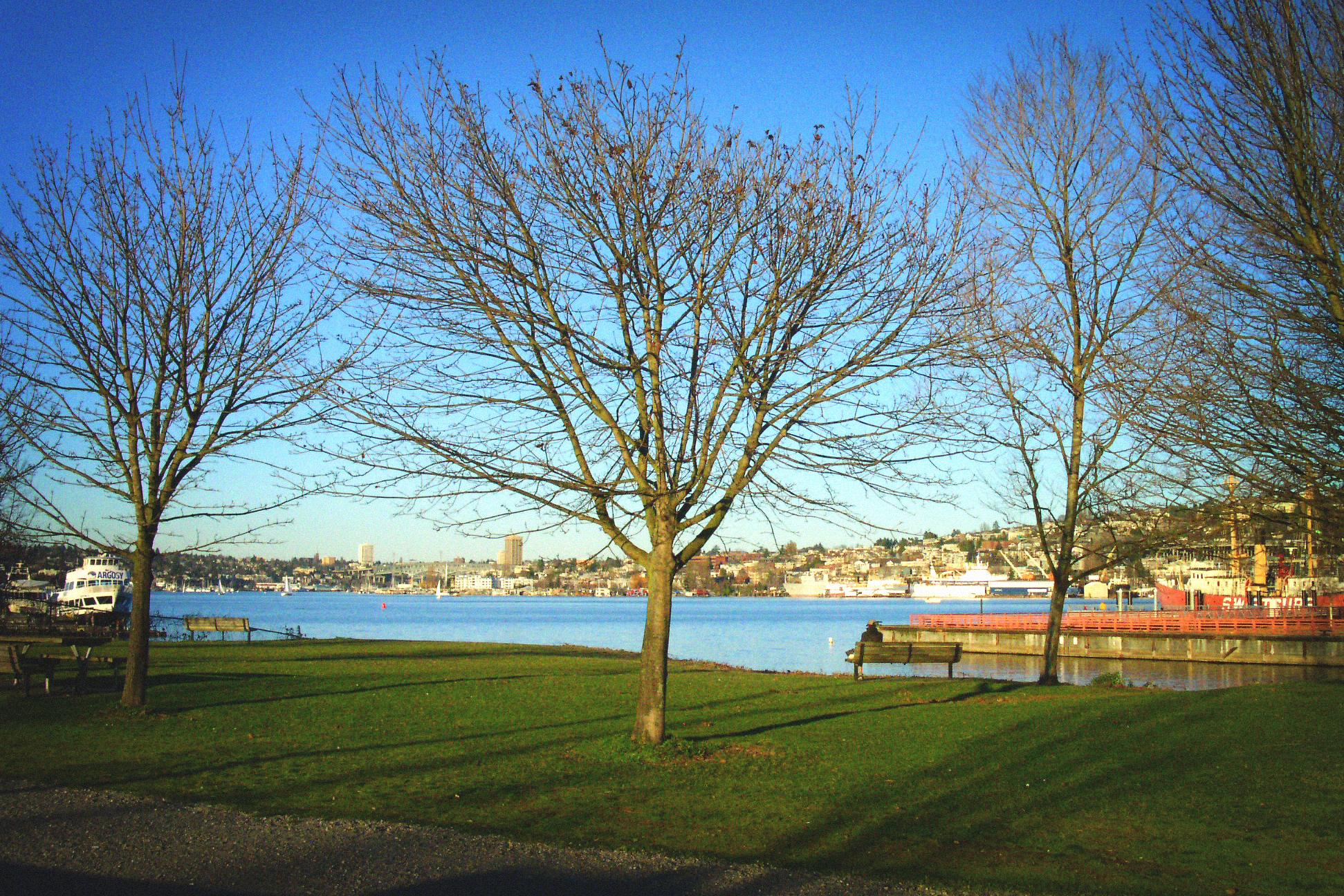Lake Union Park, Seattle, WA